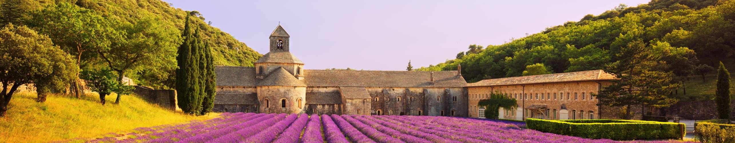 Plateau de lavandes et mas provençal
